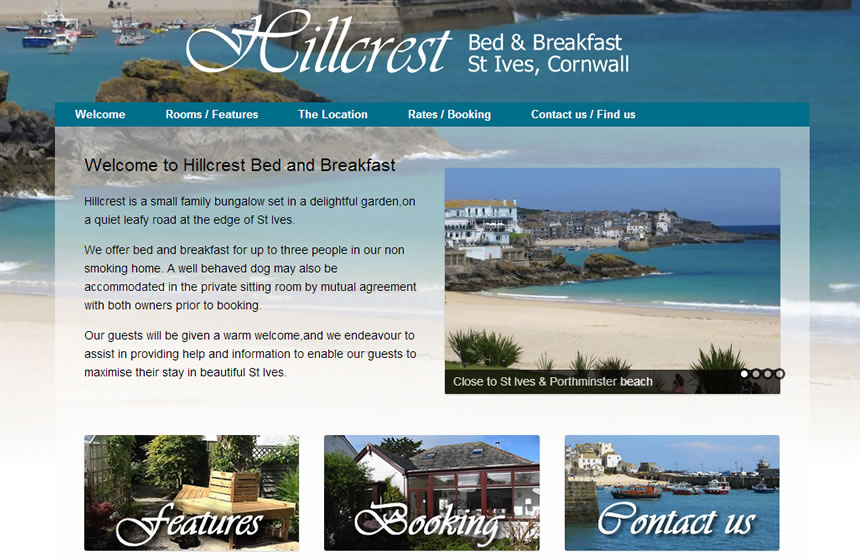 Website design Cornwall - Seagene
